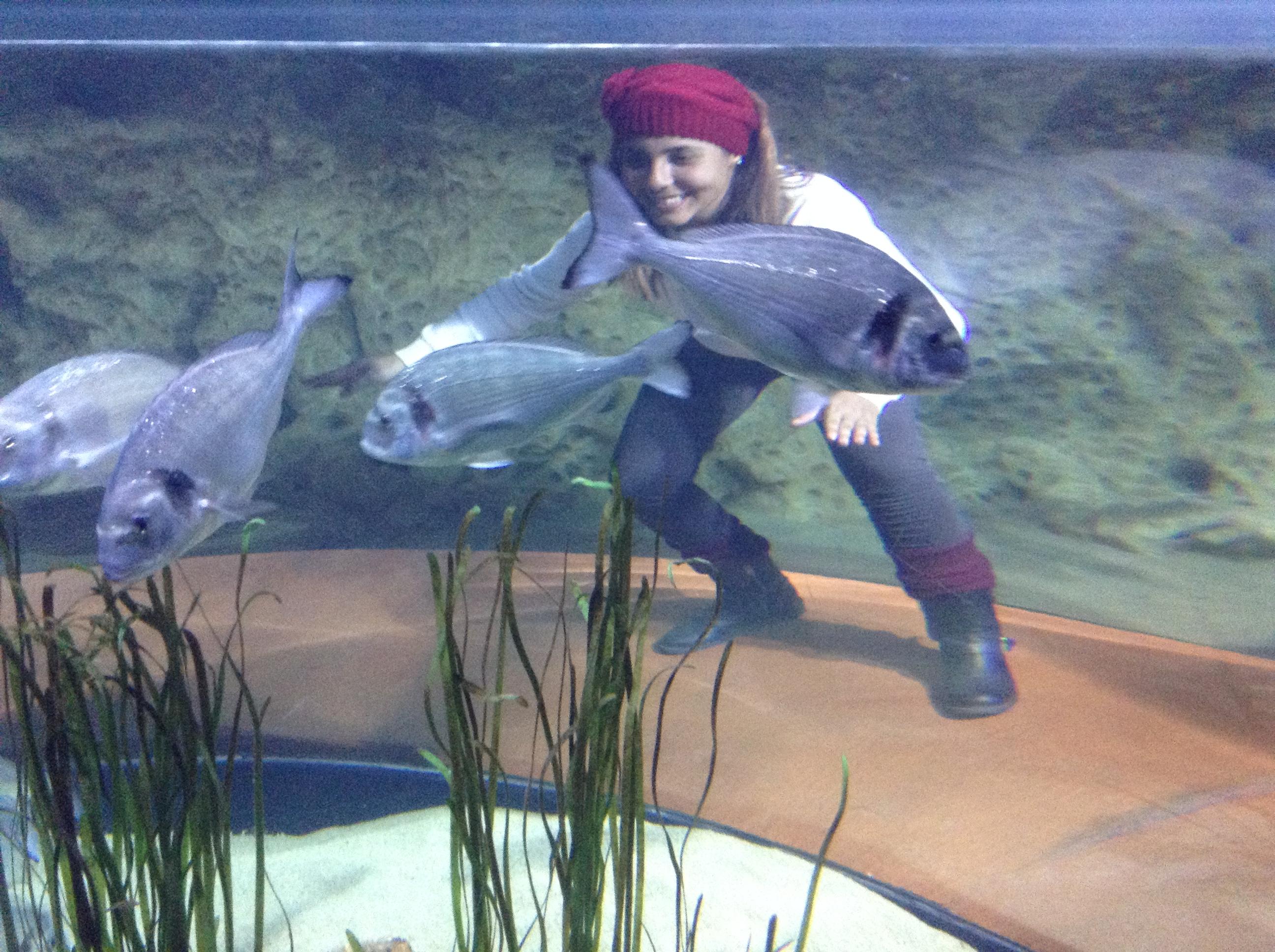 aquario-nacional-malta
