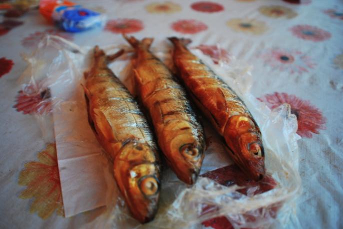 peixe omul